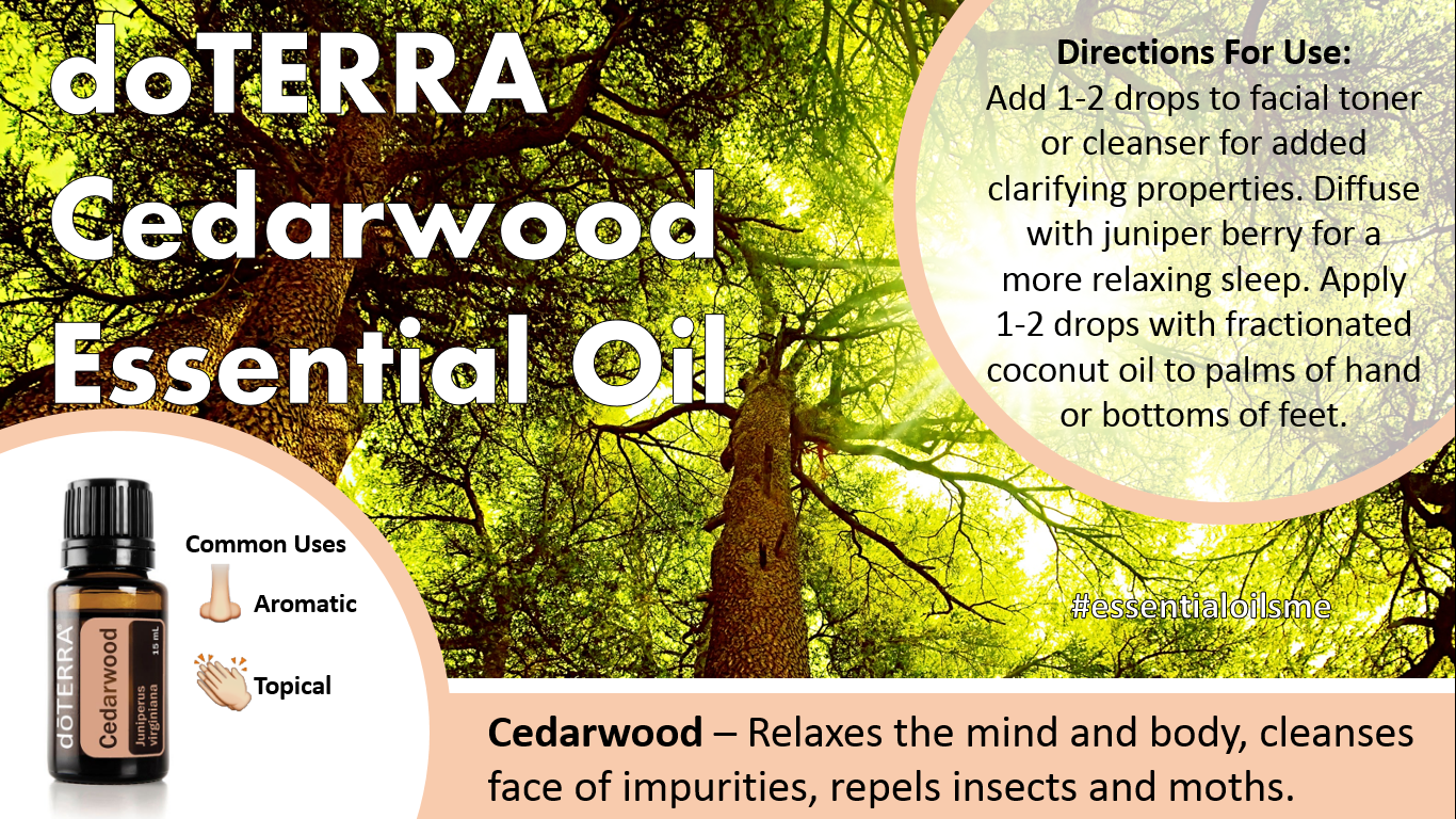 Doterra Cedarwood Essential Oil Uses Oil