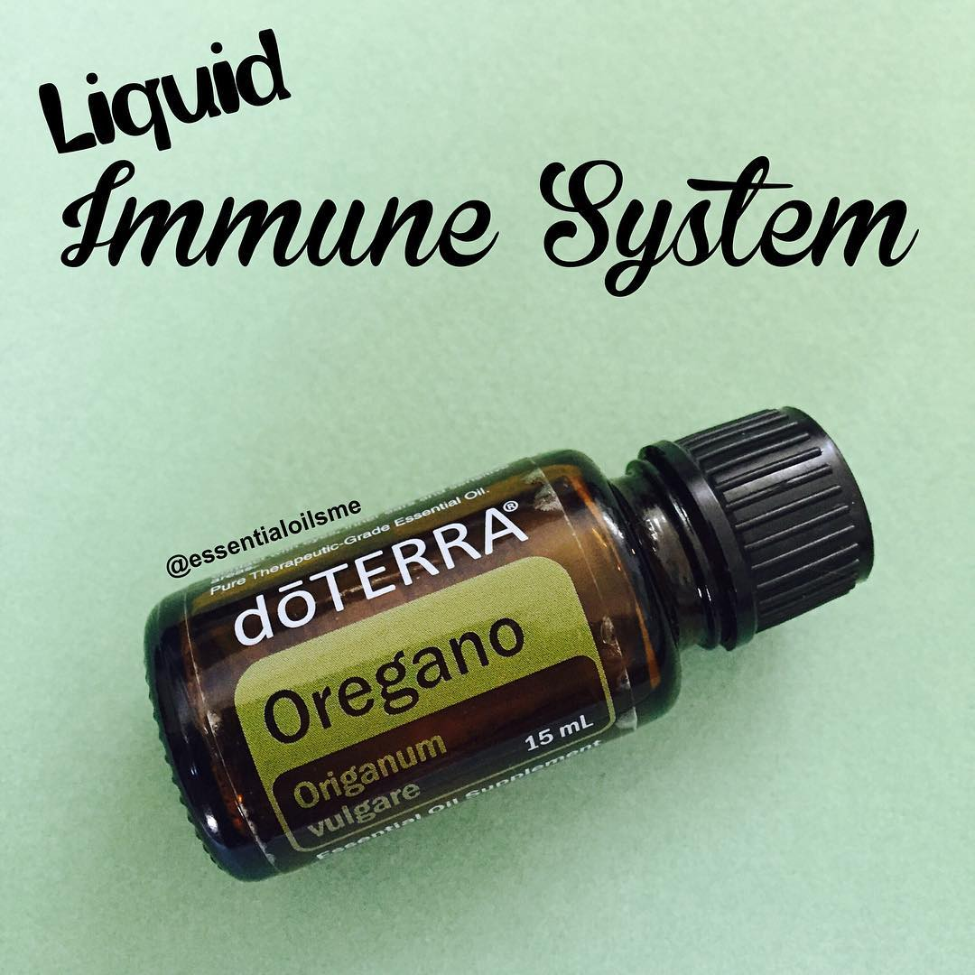 support immune system function with oregano oil