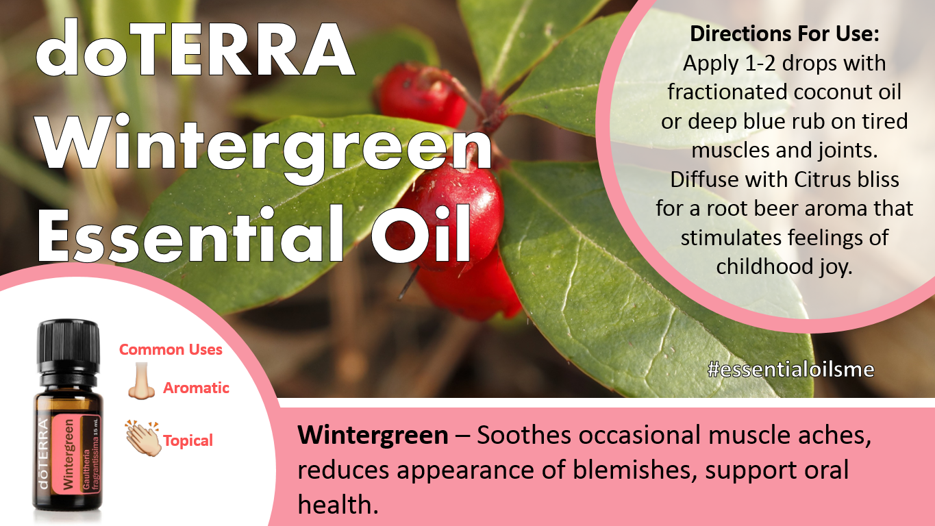 doterra wintergreen essential oil